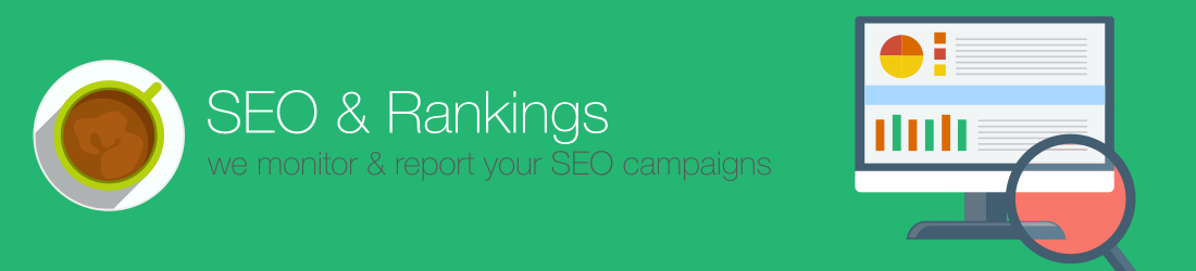 SEO campaign monitoring and reporting